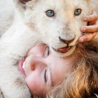 Mia und der weisse Löwe
