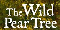The Wild Pear Tree (türkische OmU)